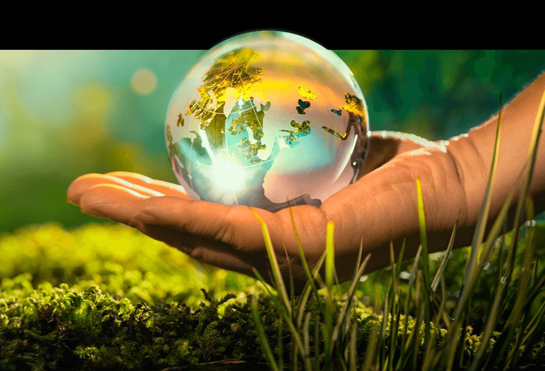 Eigenschaften von expandiertem Polypropylen | Nachhaltigkeit | EPP-Forum Bayreuth